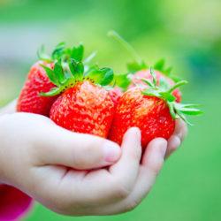 best-garden-for-kids
