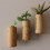 diy mini succulent wine cork planters
