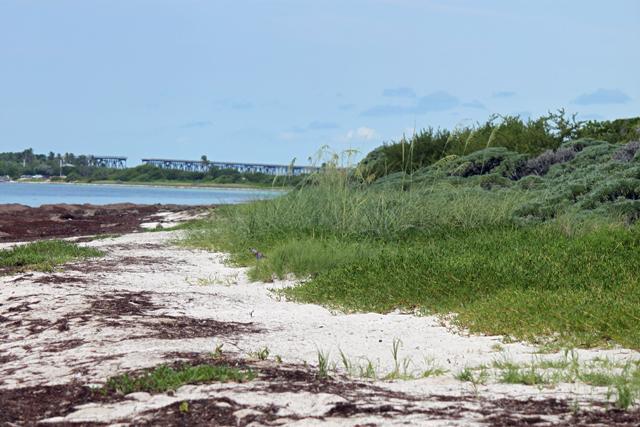 Bahia-Honda-Beach-Side